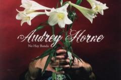 Audrey Horne-No Hay Banda