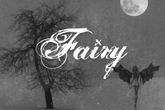 Fairy-Vinterverv-booklet.indd